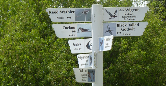Directional signage to the birds